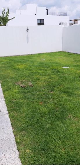 Casa Renta Juriquilla Torre De Piedra Roof Garden