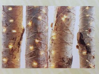 4 Series De Luces Tipo Alambre Led 4.81m C/u Bodas Jardin