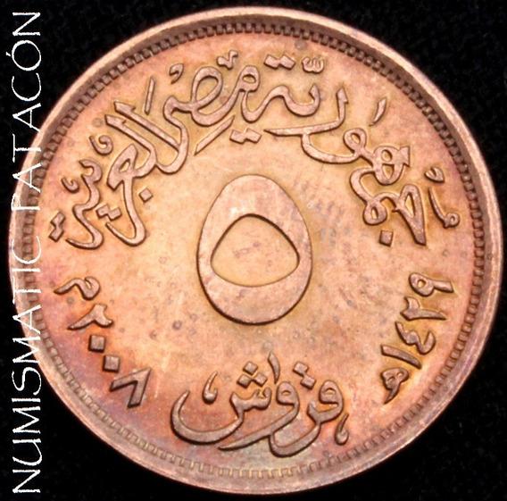 Moneda Egipto 5 Piastras 2008 (1429) - Km 941 - Excelente