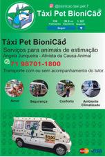 Taxi Pet Em Salvador E Cidades Circunvizinhas