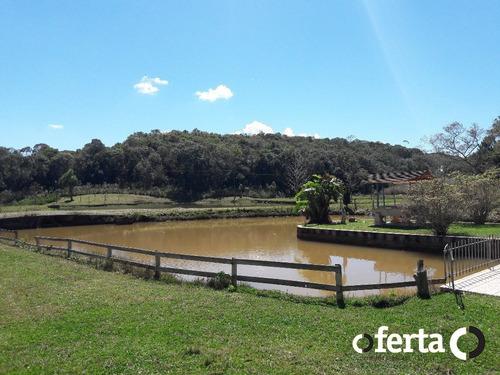 Imagem 1 de 15 de Chacara Com Casa - Sao Dimas - Ref: 439 - V-439