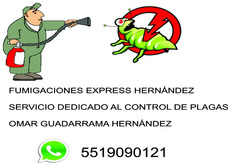 Fumigaciones Express Hernández