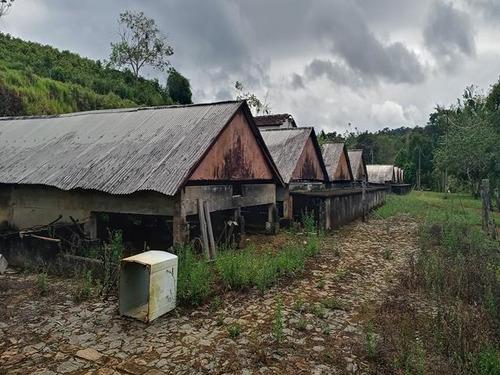 Fazenda - Sitio Com 6 Quartos, 10000m2, À Venda - Taboquinhas - Itacaré - Faz Uru
