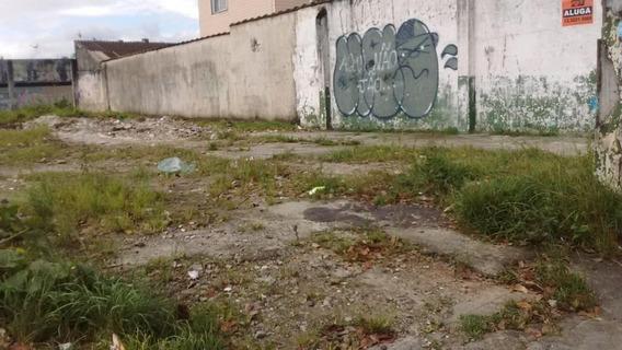 Terreno Em Parque Bitaru, São Vicente/sp De 0m² Para Locação R$ 25.000,00/mes - Te326193