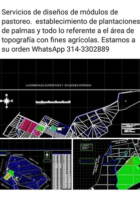 Multi Servicios Agropecuarios A&a