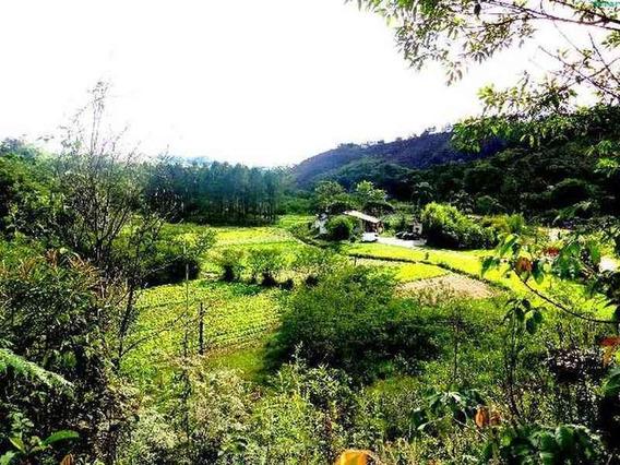 Venda Chácara / Sítio Rural Capelinha Guarulhos R$ 750.000,00 - 28519v