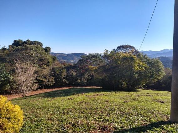 Terreno Em Machadinho, Santo Antônio Do Pinhal/sp De 0m² À Venda Por R$ 400.000,00 - Te434917