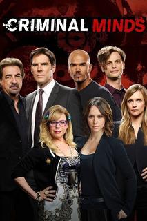 Série Criminal Minds - 1ªa14ª Temporada Dublado + Encarte.
