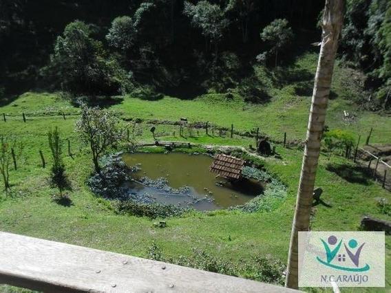 Sítio Para Venda Em Salesópolis, Nha Luz, 2 Dormitórios, 1 Banheiro - St0103