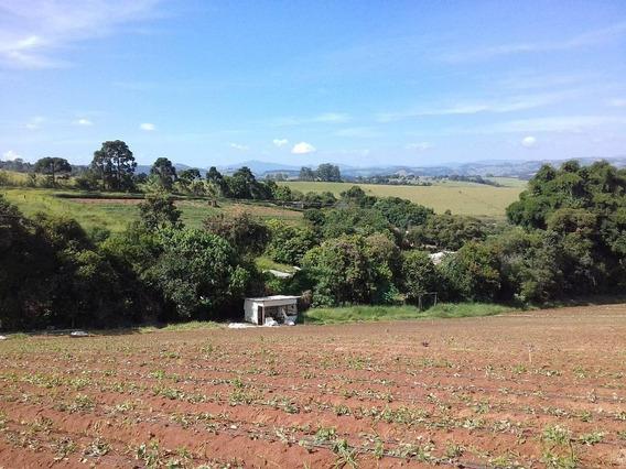 Área Rural À Venda Sertãozinho Estiva. - Ar0017