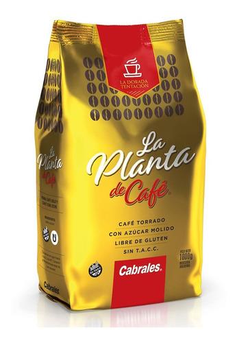 Imagen 1 de 1 de Café Molido La Planta De Café Cabrales Libre Gluten Sin Tacc