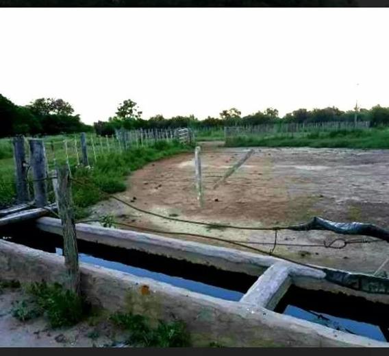 Venta Campo Agrícola 100 Ha Real Sayana (santiago Estero)