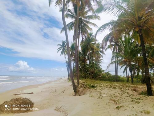 Excelente Área, Localizada Em Belmonte-ba.