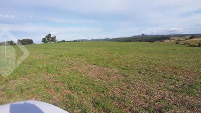 Fazenda - Alto Amorim - Ref: 217829 - V-217829