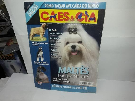 Livro Cães & Cia Maltês Por Que Ter Um?