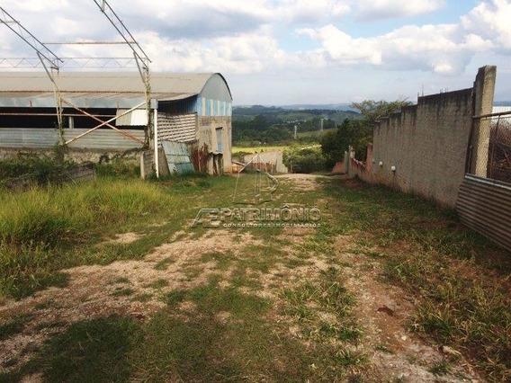 Area - Iporanga - Ref: 50066 - V-50066