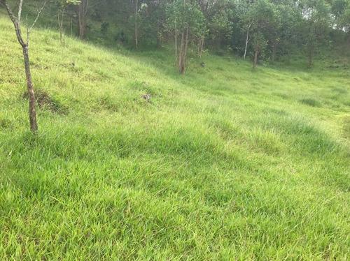 Imagem 1 de 14 de A26-vendo Terreno Documentado