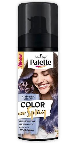 Retoca Raices Palette Color En Spray Violeta Profundo X 120m