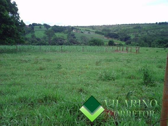 Vendo Fazenda Com Porteira Fechada - 846