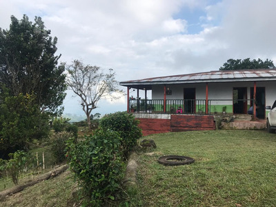 Venta Finca Cafetera Sector Cordoba Quindio
