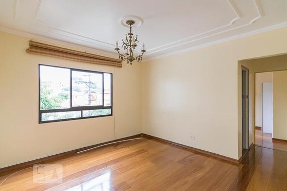 Apartamento Para Aluguel - Jardim Bela Vista, 2 Quartos, 65 - 893052095