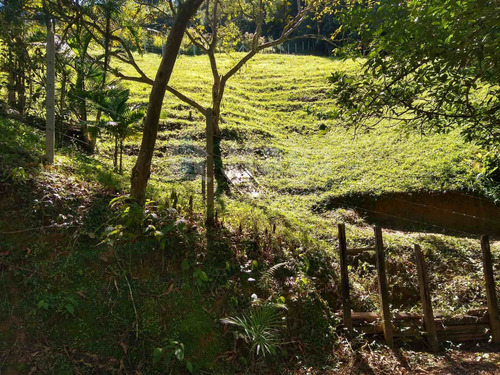 Terreno Rural Para Sítio À Venda Em Pomerode/sc - 1767c