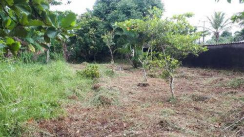 Bom Terreno Perto Do Mar No Cibratel 2 - Itanhaém 5236 | Npc