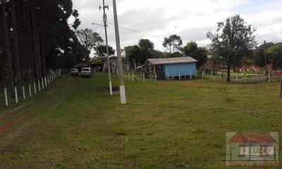 Sítio / Chácara A Venda Em São José Dos Pinhais, Campo Largo Da Roseira, 3 Dormitórios, 1 Suíte, 1 Banheiro, 2 Vagas - 731