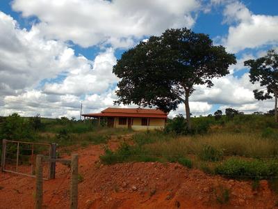 Fazenda Em Jequitibá Com 45 Hectares- 06 Klm Do Asfalto –ótima Casa - 1975