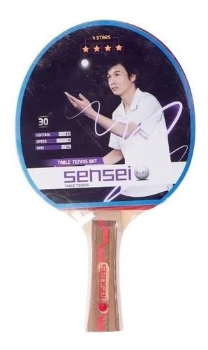 Imagen 1 de 1 de Paleta De Ping Pong Sensei 4 Estrellas