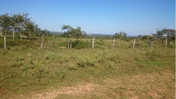 Fazenda A Venda Em Mato Grosso (dupla Aptidão) - 705