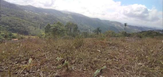 36b-terreno Área Rural Fazendas Próximas