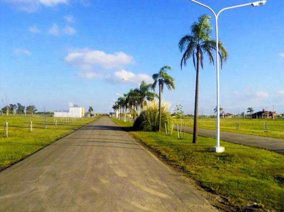 Terreno En Punta Chacra Roldan