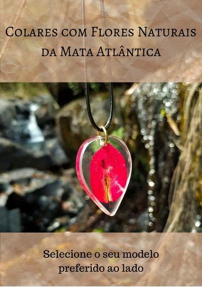 Colar Feminino De Flores Naturais S/borda Metálica +brinde
