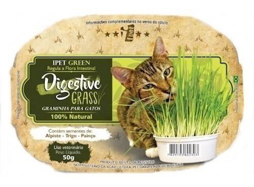 Sementes De Grama Dos Gatos Digestive Natural Intestinal