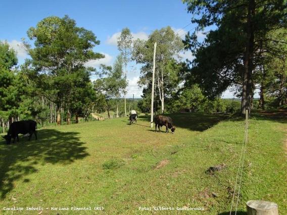 Sítio / Chácara Para Venda Em Sertão Santana, -, 3 Dormitórios, 1 Banheiro, 3 Vagas - 6003_1-779618