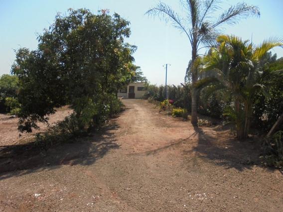 Chácara / Sítio / Fazenda - Aluguel - Rural - Cod. 3318 - L3318