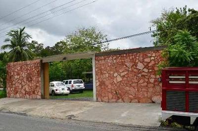 Venta De Palapa Para Eventos En Tihuatlán, Veracruz