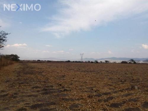 Imagen 1 de 5 de Oportunidad De Inversión Temixco, Morelos. Zona Conurbada De Cuernavaca Mx17-de5821 7124