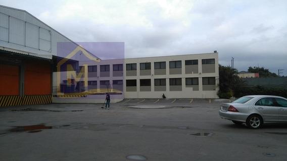 Comercial Para Aluguel, 0 Dormitórios, Jardim São Geraldo - Guarulhos - 769
