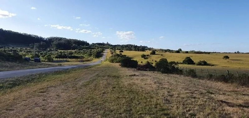 Campo De 35 Hectareas Sobre Ruta 12
