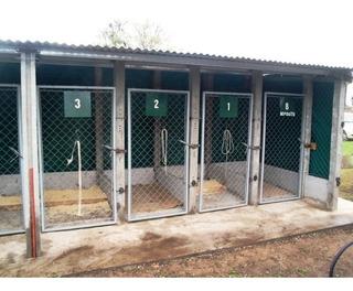 Caniles Para Perros .criaderos ,llave En Mano