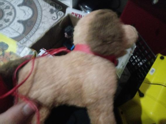 O Cachorro Levado Da Breca Pipi