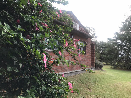 Chacra Orgánica Con Casas - 6,5 Ha En Colonia Este