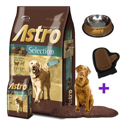 Imagen 1 de 3 de Astro Selection 17kg Mas Regalos Y Envio