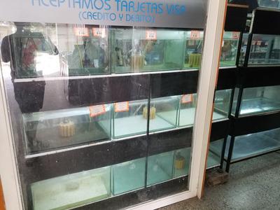 Pet Shop - Acuario En Venta