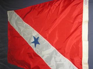 Bandeira Tradicional Do Estado Do Pará Nova - Michaella