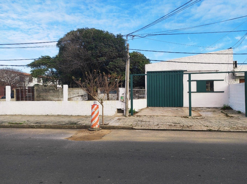 Alquiler Galpón Local Taller Depósito 250m2 Centro Maldonado