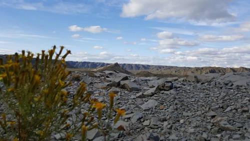 Imagen 1 de 14 de Campo Alumbre De 3750ha En Mendoza