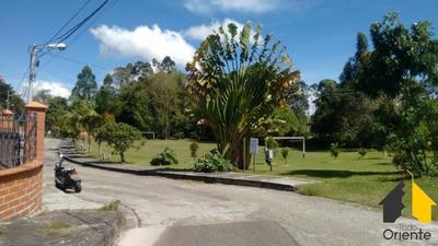 Casas En Arriendo Rionegro 874-592
